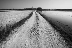 PAESAGGI D'ACQUA Immagini del territorio lombardo tra Milano e Pavia fotografie di Gianni Maffi